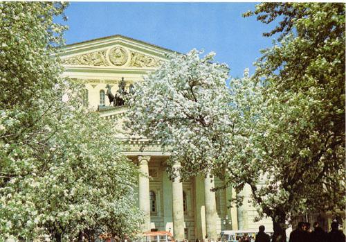 Пластиковые и железные деревья в Москве